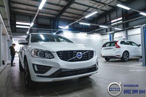 Hình 11 - Showroom Volvo Phú Mỹ Hưng